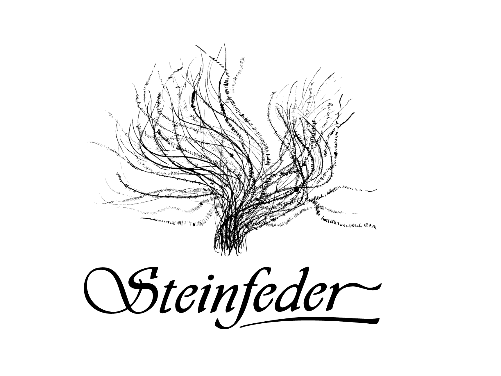 steinfeder-logo2.png